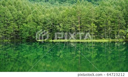 어 射鹿 연못 64723212