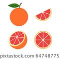 Fresh pink grapefruit vector set isolated on white 64748775