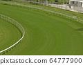 The Horse Racing at Hong Kong Jockey Club. 1 July 64777900
