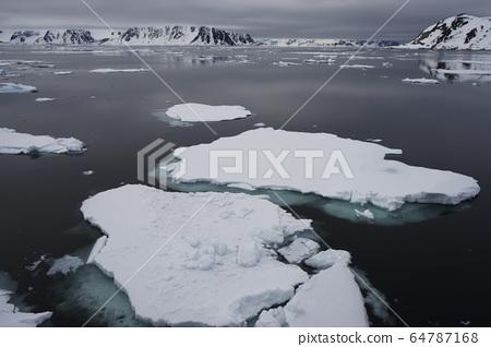 北極冰 64787168