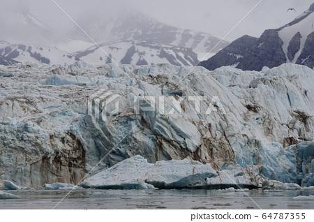 북극의 빙하 64787355