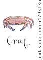 Serrated mud crab 64795136