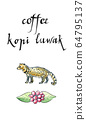Asian Palm Civet, luwak, The animal used for the production of expensive coffee Kopi Luwak 64795137