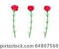 Red carnation floral set. Crimson flowers with leaves and stems. Botanical illustration isolated on 64807566