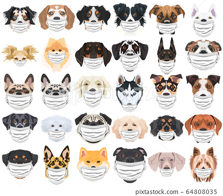 Illustration Dogs with respirator set 64808035