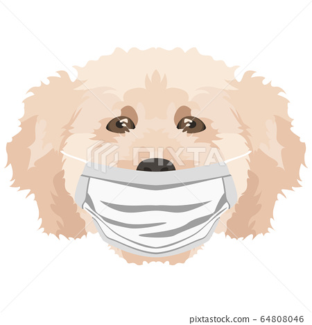 Illustration Dog poodle with respirator 64808046