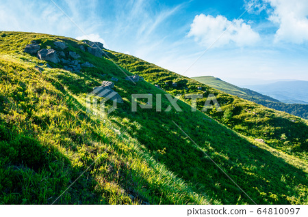 beautiful summer landscape in mountains. green 64810097