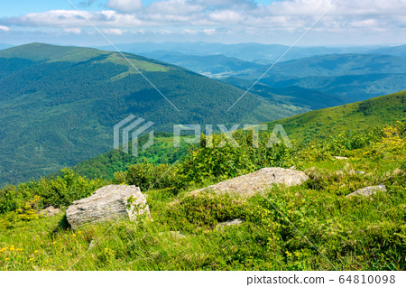 beautiful summer landscape in mountains. green 64810098