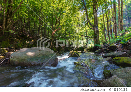 beautiful landscape of rapid mountain river. flow 64810131