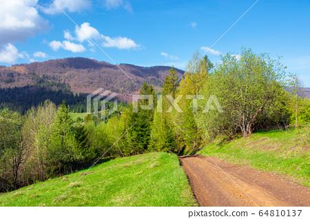 beautiful nature mountain scenery. path through 64810137