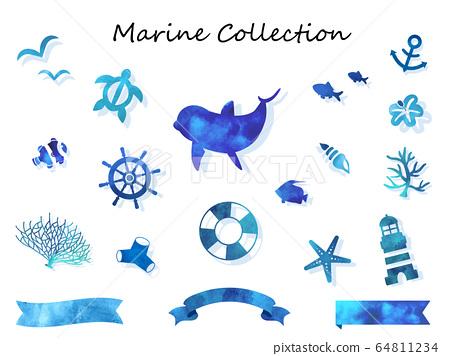 바다 생물 예쁜 파란색 수채화 컬렉션 64811234
