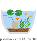 Water lily bowl biotope 64826180