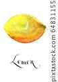 Lemon fruit 64831155