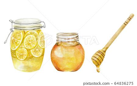 허니 레몬 꿀 허니 디퍼 수채화 일러스트 64836275