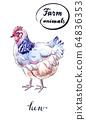 White hen 64836353