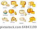 Cheese types sketch, dairy food products icons 64843199