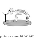 cartoon skeleton of mammoth on paleontology in museum of prehistory. white background isolated vector illustration 64843947