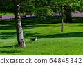 Beautiful landscape around the West Princes Street 64845342