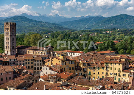 Aerial view of Lucca from the Guinigi Tower - Tuscany Italy 64875628