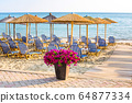 Colorful flowers at sandy beach 64877334