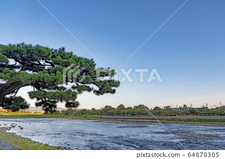 京都嵐山桂河景觀 64878305