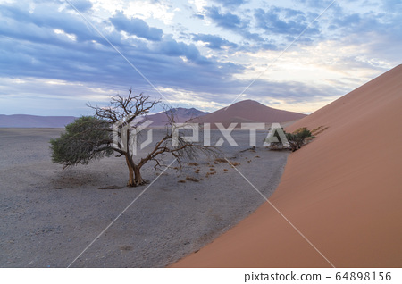 듄45,納米比亞,納米比亞,非洲 64898156
