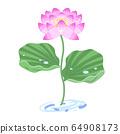 蓮花插圖(粉紅色/粉紅色) 64908173