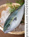 Inada, japanese whole raw yellow tail 64926405