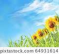 Sunflower and cat seal landscape 64931614