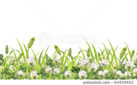 白三葉草和貓罐 64939402