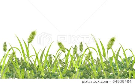 貓海豹和三葉草的領域 64939404