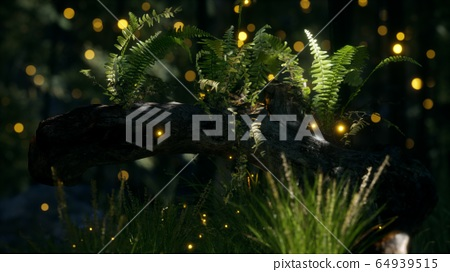 horizontally bending tree trunk with ferns 64939515