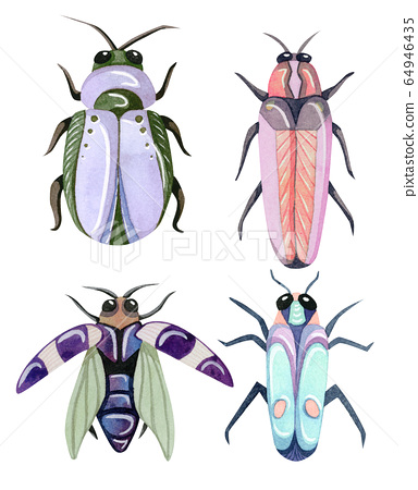 Hand painted watercolor cartoon beetles. Funny colorful and cute insects and bugs. 64946435