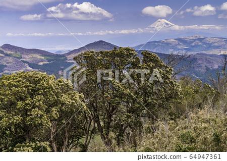 (靜岡縣)伊豆西那山口和富士山的遠景 64947361
