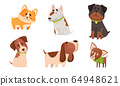 Funny Dogs in Sitting and Standing Poses Vector Set 64948621