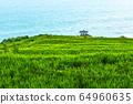남해 가천 다랭이 마을 64960635