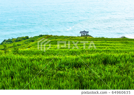 Namhae Gacheon Bonito Village 64960635