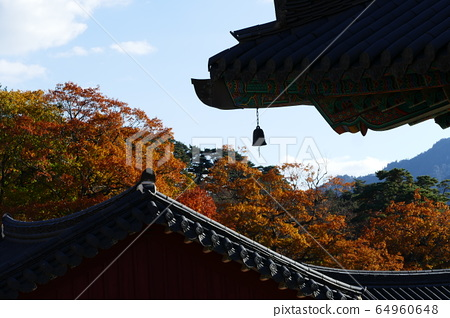 Temple scenery 64960648