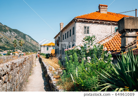 Bay of Kotor, ancient fortress and old town houses in Kotor, Montenegro 64961089