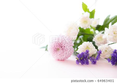 切花菊花為背景 64963401