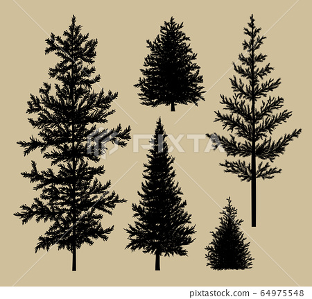 Fir tree silhouette on brown paper background 64975548