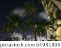 Hilton Hawaiian Village night view 64981800