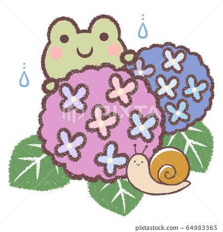 青蛙和繡球花和蝸牛 64983365