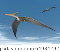 Pteranodon flying - 3D render 64984292