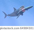 Megalodon shark eating a whale - 3D render 64984301