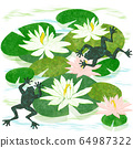 Pond with water lilies, lotuses and frogs, hand 64987322