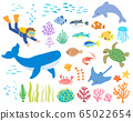 Sea creatures_diver 2_hand drawn 65022654