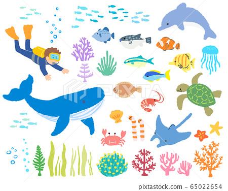Sea creatures_diver 2_hand drawn 65022654