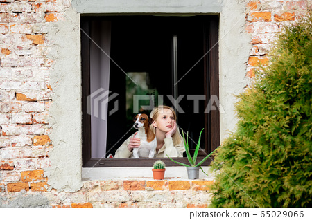 woman with a dog sits at the window during 65029066