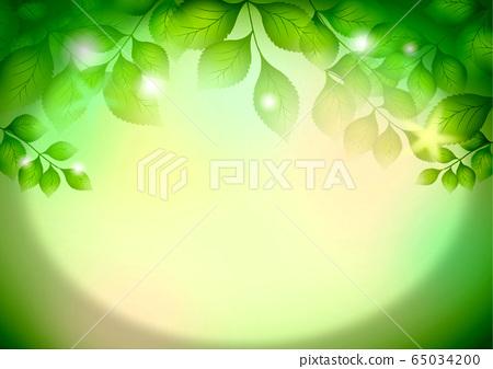 Fresh green frame 65034200